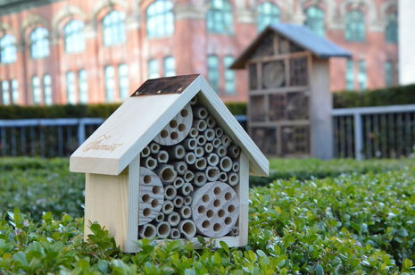 Fairmont Hotels & Resorts maximizes its global occupancy and welcomes over 2 million well-travelled honeybees at its properties worldwide