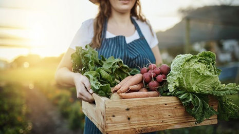 Sustainable Hospitality: Green Food Practices